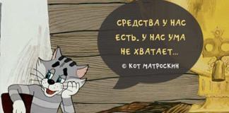 цитаты из советских мультиков, кот матроскин